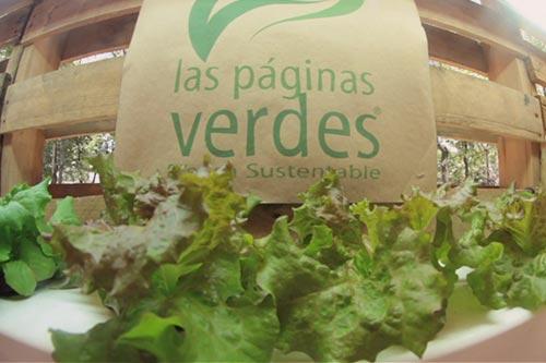 Ecofest 2014, evento, new ventures México, camaroni producciones, memoria visual, sustentaibilidad, empresas verdes, emprendedores, ciudad de México, reforma, lechuga orgánica, videos