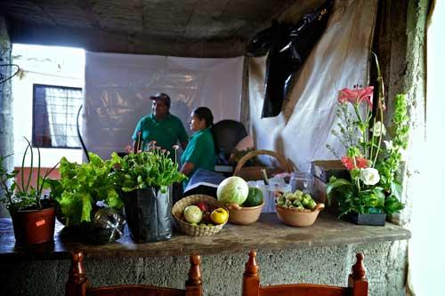 Portada productores organicos sistema biobolsa campo mexico camaroni videografías sociales hortalizas venta proyecto